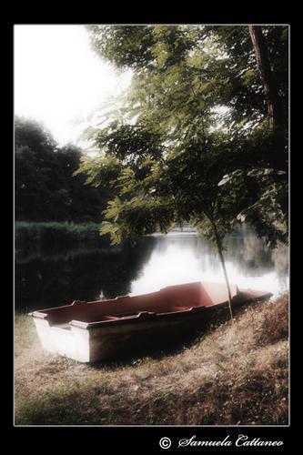 la solitaria - Turbigo (2061 clic)