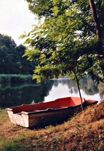 la solitaria - Turbigo (2166 clic)