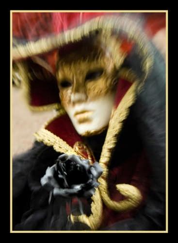 la rosa nera - Venezia (1607 clic)