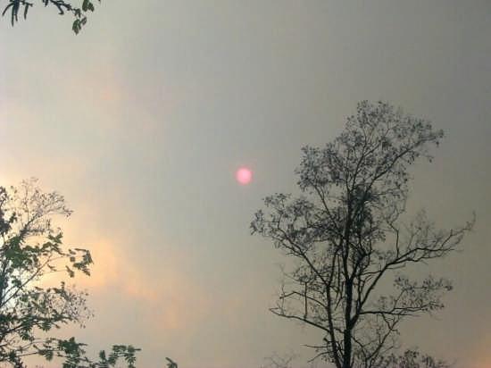 Eclissi di Sole- - Brez (3039 clic)