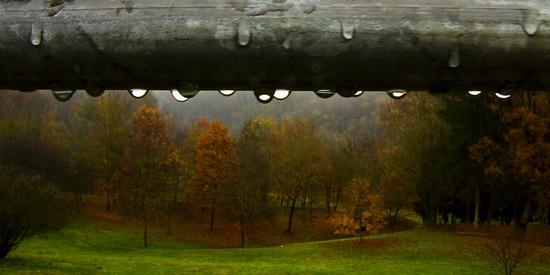 autunno | CASTELNUOVO DON BOSCO | Fotografia di angelo notarmuzi