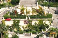 Il giardino sulle scalinate del Duomo di San Giorgio a Modica  - Modica (4421 clic)