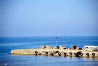 Il Moletto  - Marina di modica (2286 clic)