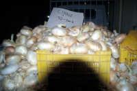Sagra della Cipolla di Giarratana  - Giarratana (5491 clic)