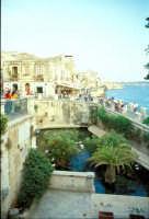 Fonte Aretusa e Lungomare Alfeo (Ortigia)  - Siracusa (2655 clic)