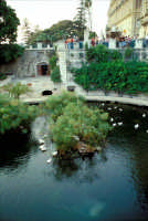 Fonte Aretusa (Fontana delle Papere - Ortigia)  - Siracusa (8785 clic)