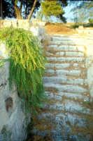 Area Archeologica  - Siracusa (1299 clic)