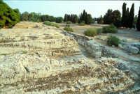 Area Archeologica - Ara di Jerone  - Siracusa (1684 clic)