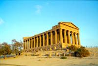 Tempio della Concordia  - Valle dei templi (2407 clic)