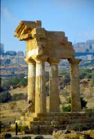 Tempio di Castore e Polluce  - Valle dei templi (2827 clic)