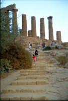 Tempio di Giunone  - Valle dei templi (2496 clic)