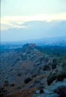 Valle dei Templi  - Valle dei templi (2511 clic)