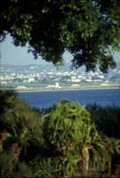 Le saline viste da Mozia  - Mozia (2626 clic)