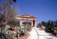 Il Tempio di Segesta  - Segesta (3423 clic)