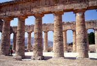 Tempio di Segesta  - Segesta (1983 clic)