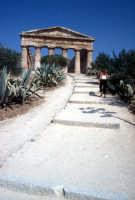 Tempio di Segesta  - Segesta (1864 clic)