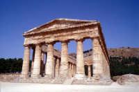 Tempio di Segesta  - Segesta (1954 clic)