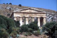 Tempio di Segesta  - Segesta (2118 clic)