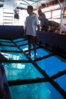 Riserva dello Zingaro fra San Vito Lo Capo e Scopello - escursione su una barca con lo sfondo trasparente attraverso cui è possibile vedere i fondali  - Riserva dello zingaro (9916 clic)