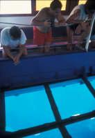 escursione su una barca con lo sfondo trasparente attraverso cui è possibile vedere i fondali del mare antistante la Riserva dello Zingaro  - Riserva dello zingaro (6437 clic)