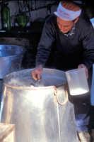 Preparazione della ricotta in una masseria tipica del modicano  - Modica (3114 clic)