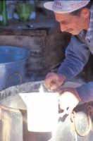 Preparazione della ricotta in una masseria tipica del modicano  - Modica (3869 clic)