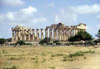 Il Tempio di Selinunte  - Selinunte (4035 clic)