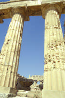 Il Tempio di Selinunte  - Selinunte (2905 clic)