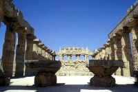 Il Tempio di Selinunte  - Selinunte (3903 clic)