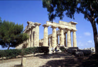 Il Tempio di Selinunte  - Selinunte (1778 clic)