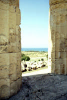 Il Tempio di Selinunte  - Selinunte (1848 clic)
