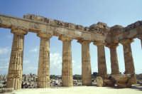 Il Tempio di Selinunte  - Selinunte (1849 clic)