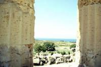 Il Tempio di Selinunte  - Selinunte (1833 clic)