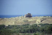 Il Tempio di Selinunte  - Selinunte (2895 clic)