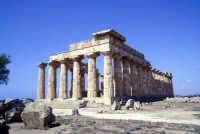 Il Tempio di Selinunte  - Selinunte (1988 clic)