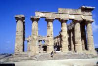 Il Tempio di Selinunte  - Selinunte (2098 clic)