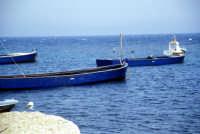 Tonnara di Bonagia - le barche dei tonnaroti pronte alla mattanza  - Bonagia (3191 clic)