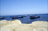 Tonnara di Bonagia - le barche dei tonnaroti pronte alla mattanza  - Bonagia (2903 clic)