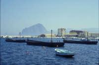 Tonnara di Bonagia - le barche dei tonnaroti pronte alla mattanza  - Bonagia (3336 clic)