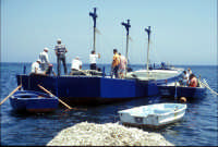 Tonnara di Bonagia - barche dei tonnaroti pronte alla mattanza  - Bonagia (2796 clic)