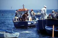 Tonnara di Bonagia - barche dei tonnaroti pronte alla mattanza  - Bonagia (4030 clic)