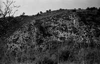 La necropoli di Realmese comprende circa 280 tombe a grotticela. Due fasi principali della sua utilizzazione: -età protostorica(dalla metà del IX sec. alla prima metà del VII sec. a.C.) Ubicazione: circa 3 Km dal centro abitato. -età arcaica (metà VII sec.; secondo quarto VI sec. a.C.)  - Calascibetta (10921 clic)