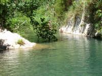 L'Anapo scorre fra le rocce calcaree di Pantalica  - Anapo (15357 clic)