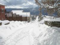 Vicolo Floresta neve  - Floresta (8848 clic)