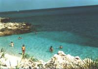 Stupenda riserva naturale, spiagge non contaminate un mare da favola.  - Riserva dello zingaro (27557 clic)