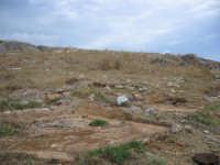 in questa zona si produceva il ben noto sugo degli antichi romani  - San vito lo capo (4051 clic)