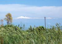 sullo sfondo l'Etna  - Morgantina (4252 clic)
