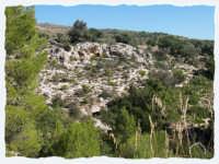 CONTRADA RENNA ALTA:GROTTE DEL FINOCCHIO  - Noto (2194 clic)