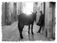 Scene tratte dal film Il capo dei capi girato a Scicli, in onda su Canale 5.  - Scicli (1934 clic)