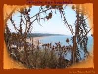 mare incantato  - Selinunte (1344 clic)